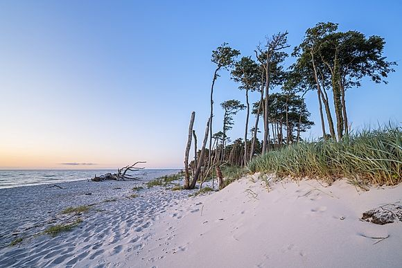 Fishland-Darß-Zingst by Christian Bäck